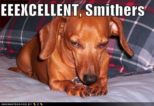 1000+ images about Dachshunds on Pinterest